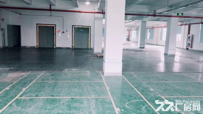 萧山标准新建厂房,整栋10000方单层1500方,适合淘宝仓储-图(7)