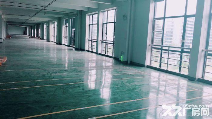 萧山标准新建厂房,整栋10000方单层1500方,适合淘宝仓储-图(6)