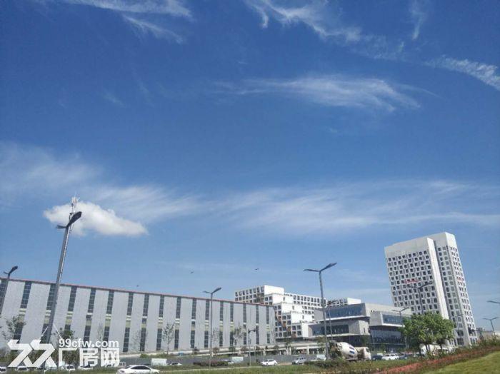 政府支持项目温江厂房出租,电子信息、智能制造、高端装备首选地-图(2)