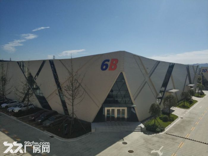 政府支持项目温江厂房出租,电子信息、智能制造、高端装备首选地-图(4)
