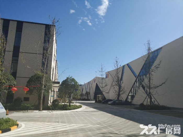政府支持项目温江厂房出租,电子信息、智能制造、高端装备首选地-图(5)