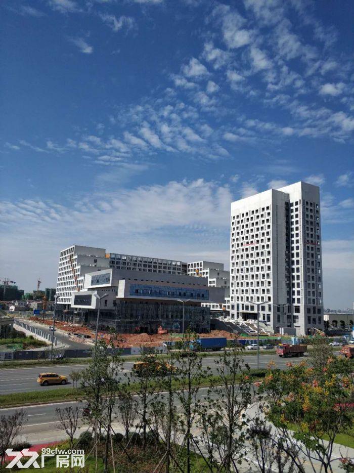 政府支持项目温江厂房出租,电子信息、智能制造、高端装备首选地-图(6)