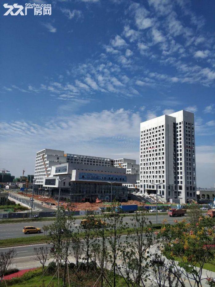 青羊优质独栋出租售,1200起租适合研发生产办,高新企业聚集地-图(7)