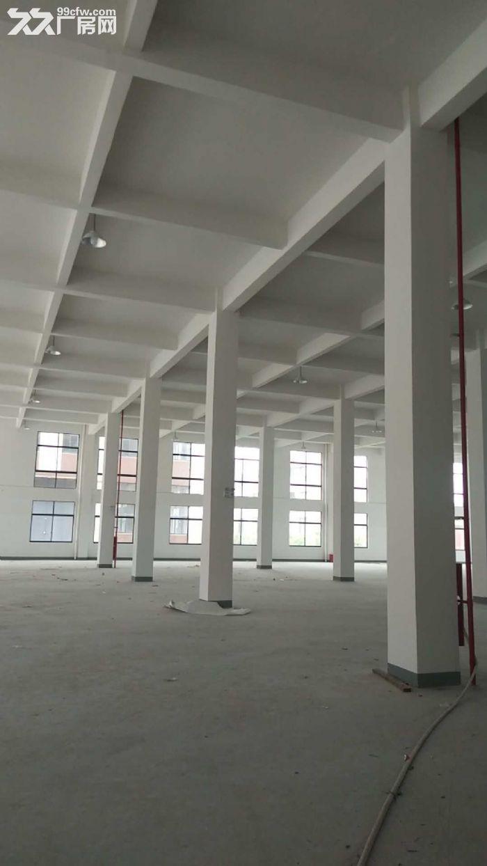 长安1−2层标准厂房2800方出租有油漆环评和重金属污水排放带3吨货梯-图(1)