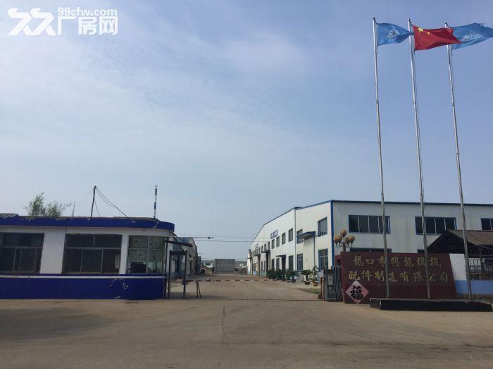 山东龙口厂房出租占地40亩-图(1)