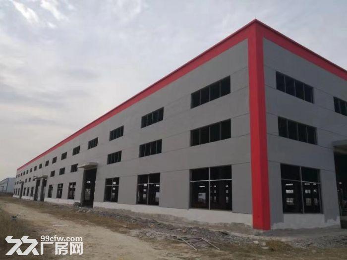 2019年新建厂房,全钢筋混泥土建成-图(1)