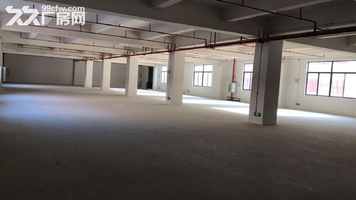 出租顺德容桂镇华口华腾工业区有货梯可过五金环保招工方便厂房新-图(3)