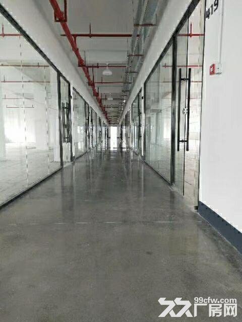 (直租)新香洲400平方厂房,22块每平方-图(3)
