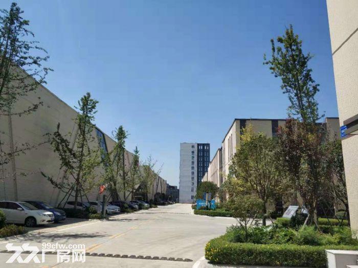 龙潭优质厂房出租,1177起租适合研发生产办,高新企业聚集地-图(4)
