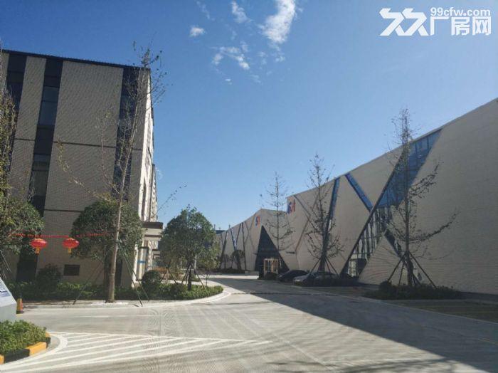 金牛区附近厂房出租,能生产研发办公,1200平起租可申请补贴-图(6)