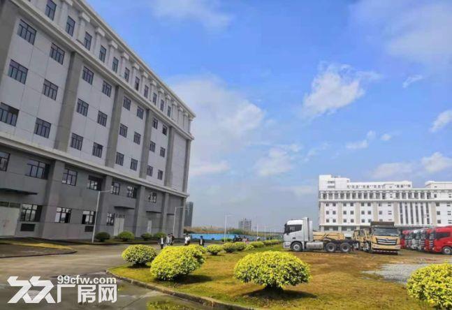 一房东金山独院厂房33000平,包做学校有批文,免租期6个月-图(2)