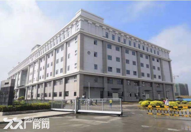 一房东金山独院厂房33000平,包做学校有批文,免租期6个月-图(3)