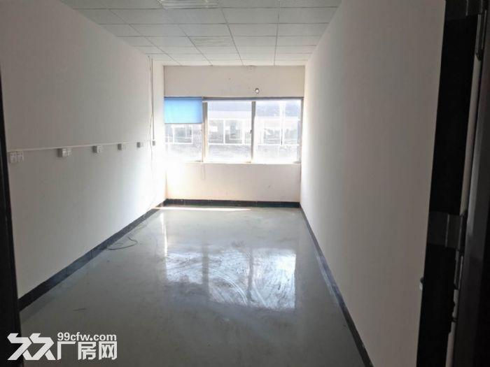 清溪豪华装修楼上电子纸箱仓库数据线厂房出租1300平-图(2)