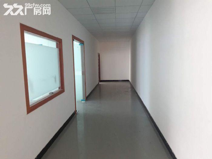 清溪豪华装修楼上电子纸箱仓库数据线厂房出租1300平-图(4)
