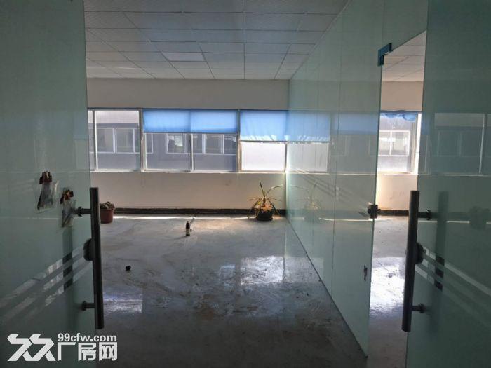 清溪豪华装修楼上电子纸箱仓库数据线厂房出租1300平-图(3)