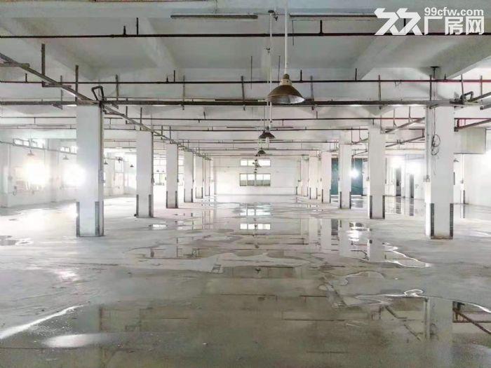 空地很大凤岗油甘埔一楼带装修厂房出租4000平方水电齐全-图(1)