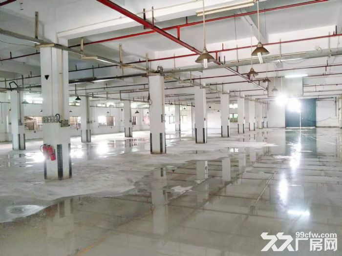 空地很大凤岗油甘埔一楼带装修厂房出租4000平方水电齐全-图(3)