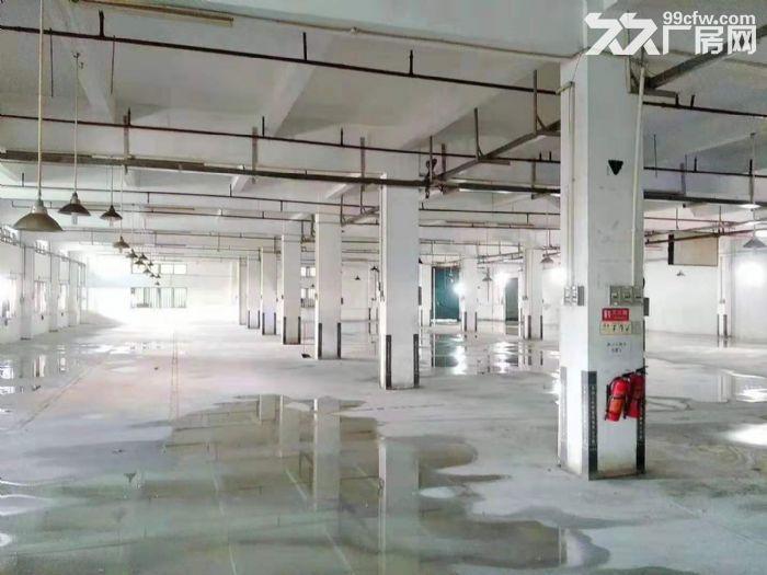 空地很大凤岗油甘埔一楼带装修厂房出租4000平方水电齐全-图(2)
