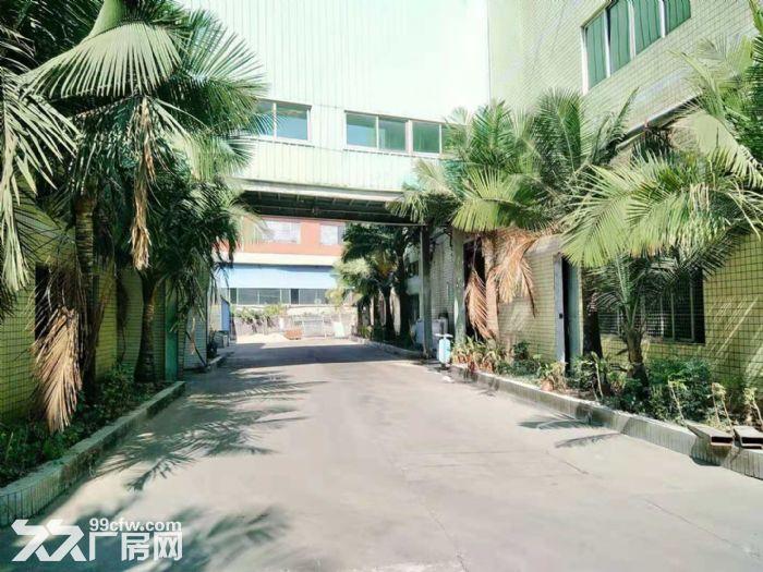 空地很大凤岗油甘埔一楼带装修厂房出租4000平方水电齐全-图(6)