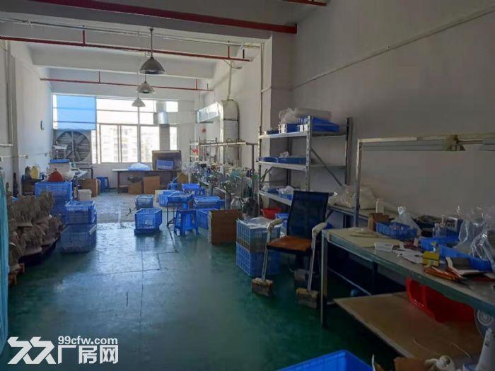 凤岗近深圳平湖工业园厂房出租楼上1300平消防齐全水电齐-图(3)