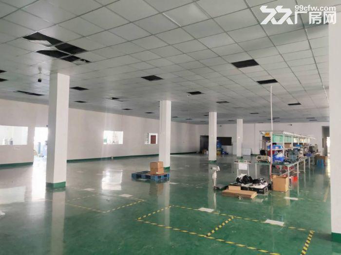 周市新镇精装修一楼标准厂房1750平米出租-图(1)