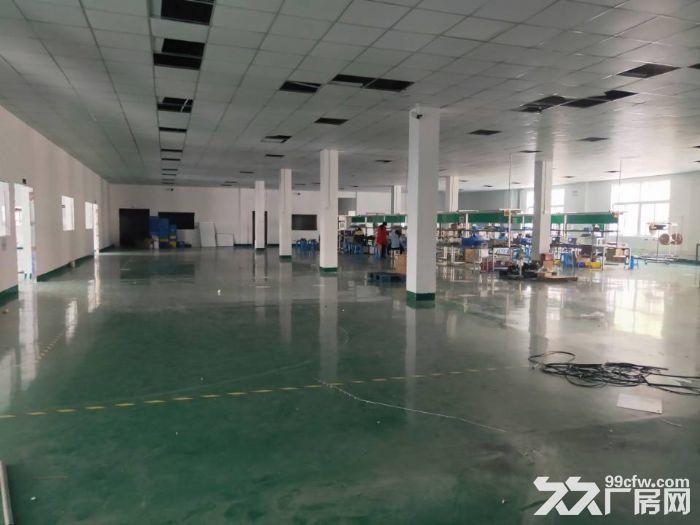 周市新镇精装修一楼标准厂房1750平米出租-图(2)