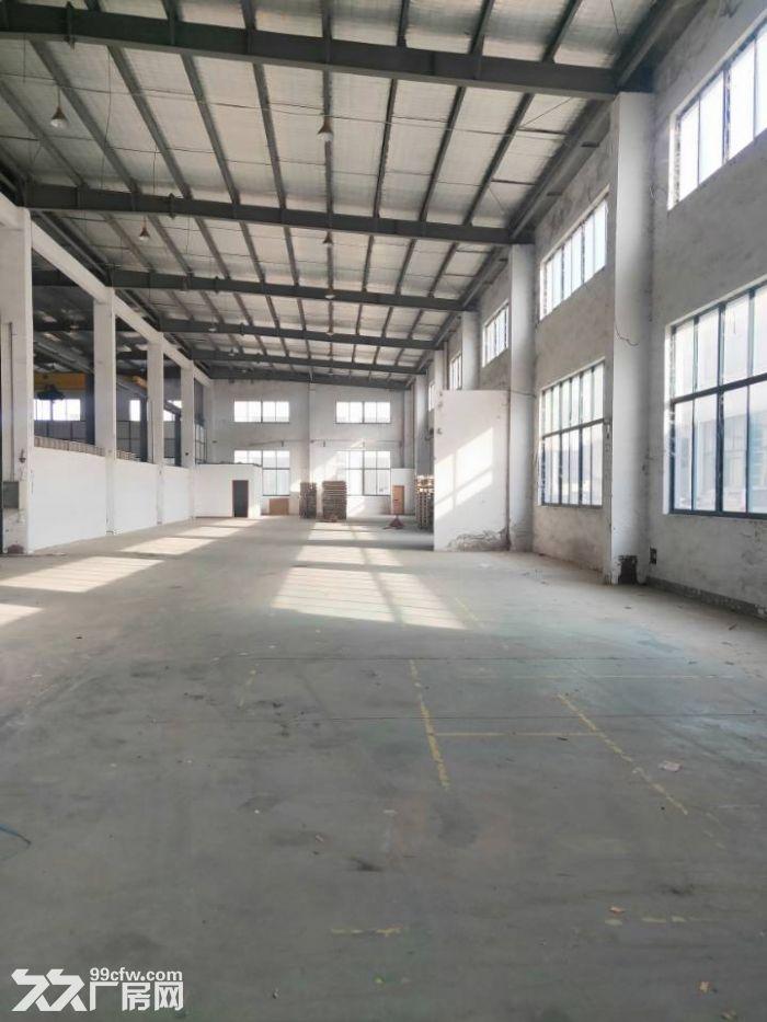 周市城北大道1350平米全单层厂房出租可分租-图(1)