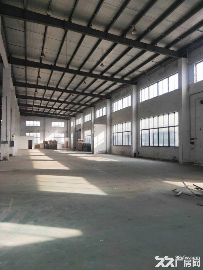 周市城北大道1350平米全单层厂房出租可分租-图(2)