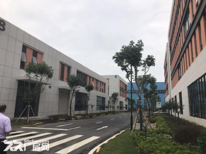 京津冀地区产业新地带12米的厂房-图(3)
