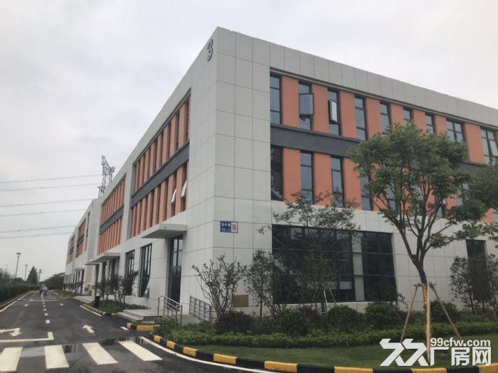 京津冀地区产业新地带12米的厂房-图(4)