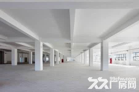 (出租)个人.江宁开发区1到3楼21000平米独栋厂房-图(2)
