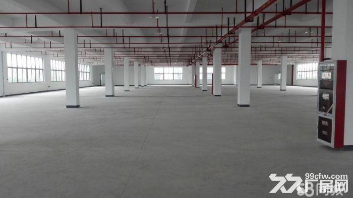 (出租)个人.江宁开发区1到3楼21000平米独栋厂房-图(3)