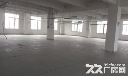 (出租)个人.江宁开发区1到3楼21000平米独栋厂房-图(4)