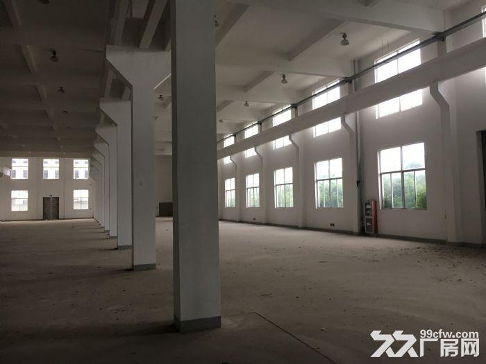 常州钟楼经济开发区附近园区6600平三层厂房出租-图(3)