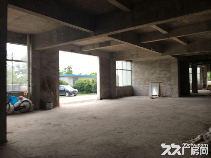 常州钟楼经济开发区附近园区6600平三层厂房出租-图(6)