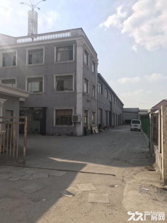 新桥申港路旁1300平方单层高10米厂房仓库出租,300平方起租,证件齐全-图(1)