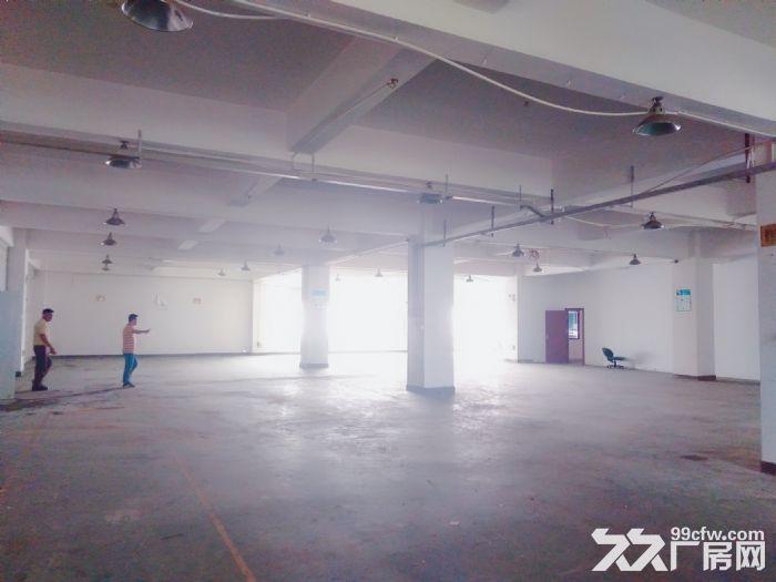 南屏科技园920平方一楼厂房,带装修拎包入驻-图(1)