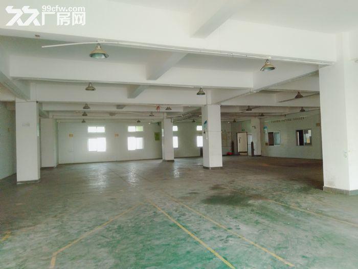 南屏科技园920平方一楼厂房,带装修拎包入驻-图(3)