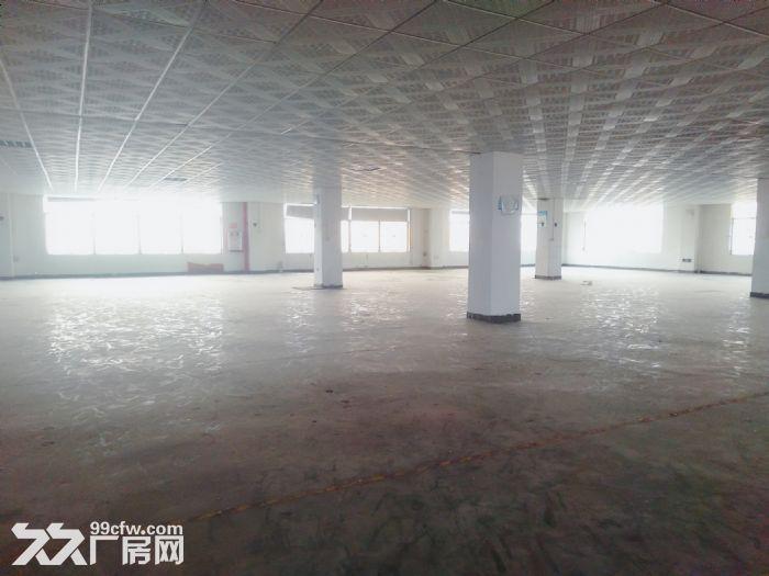 南屏科技园920平方一楼厂房,带装修拎包入驻-图(5)