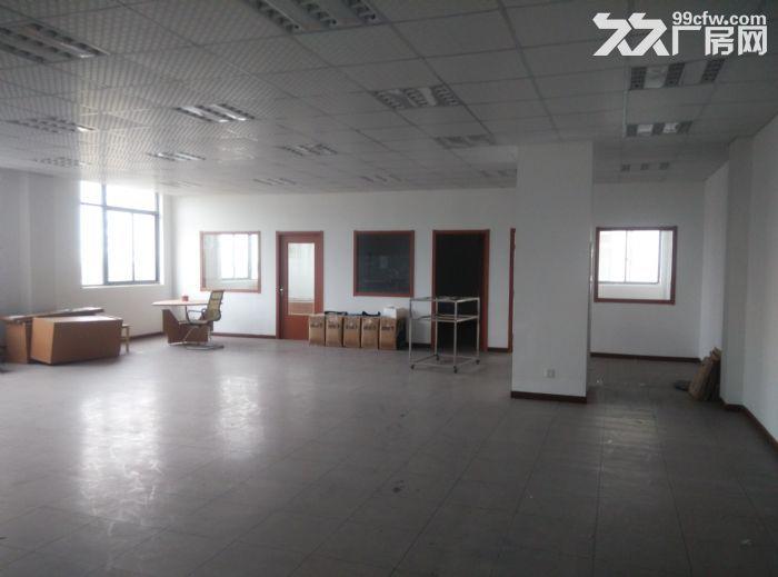 新区泰山路200平米小面积厂房出租-图(1)