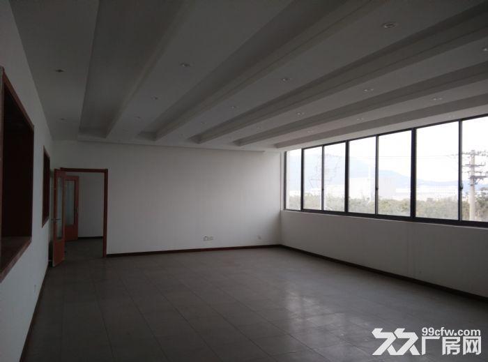 新区泰山路200平米小面积厂房出租-图(2)