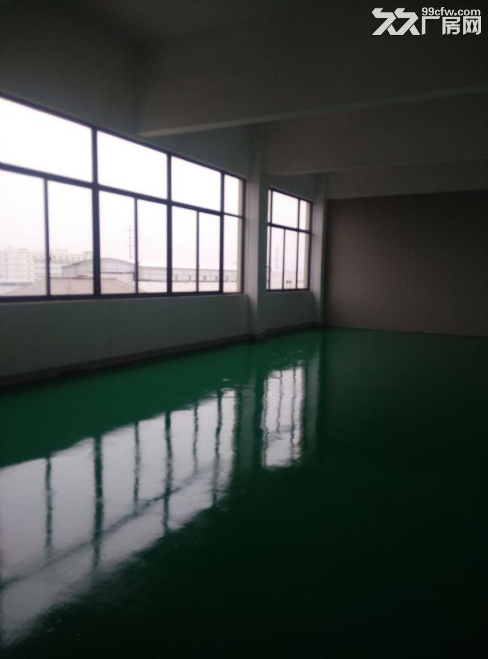 新区泰山路200平米小面积厂房出租-图(3)