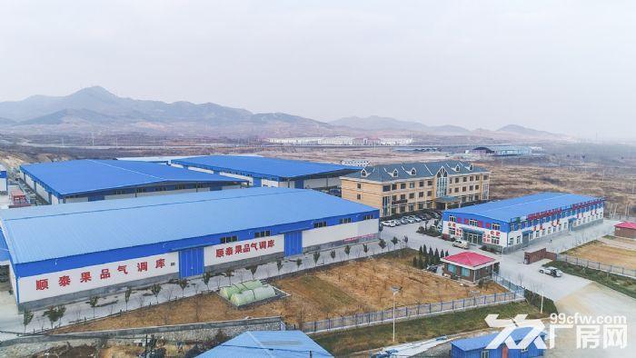 回里镇顺泰物流园区优质仓库出租-图(2)