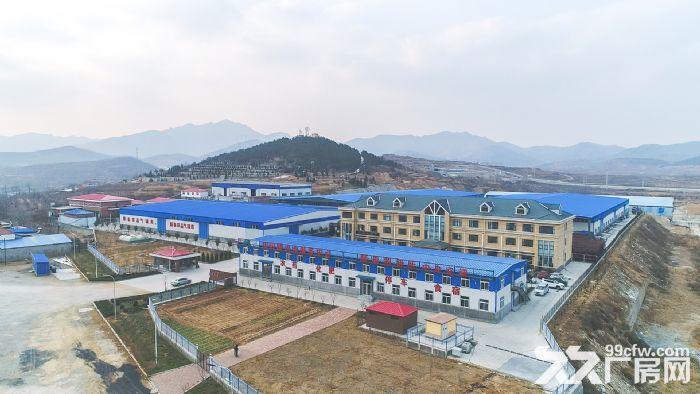 回里镇顺泰物流园区优质仓库出租-图(3)