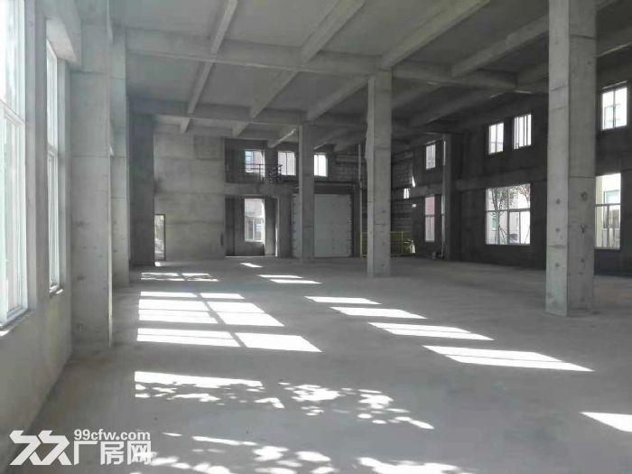 50年大产权可生产可办公可环评厂房招商-图(4)