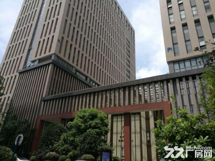 麓谷企业广场高层165−1000毛坯办公场地出租-图(8)