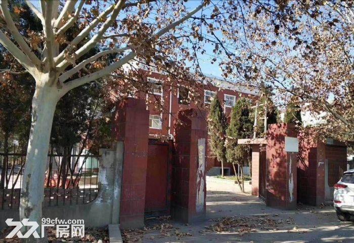 伊滨区厂房出租,占地5亩厂房4座,面积1200平米,设施完善水电配套-图(2)