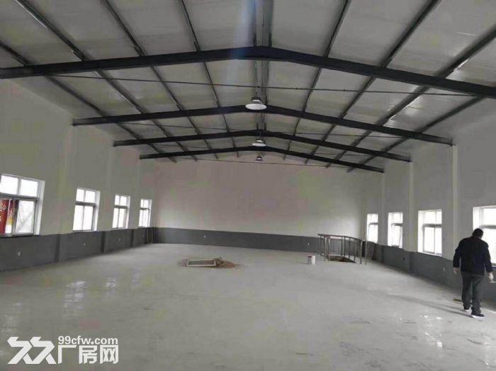 伊滨区厂房出租,占地5亩厂房4座,面积1200平米,设施完善水电配套-图(5)