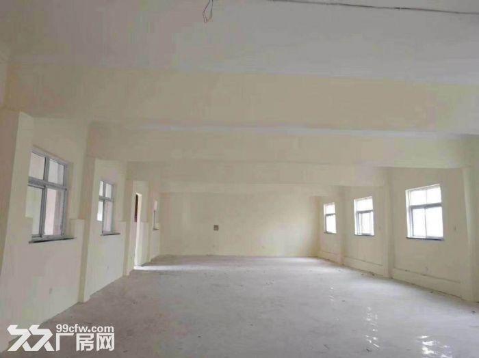 伊滨区厂房出租,占地5亩厂房4座,面积1200平米,设施完善水电配套-图(8)