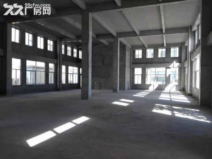 50年大产权可环评可研发生产办公一体化厂房招商-图(4)